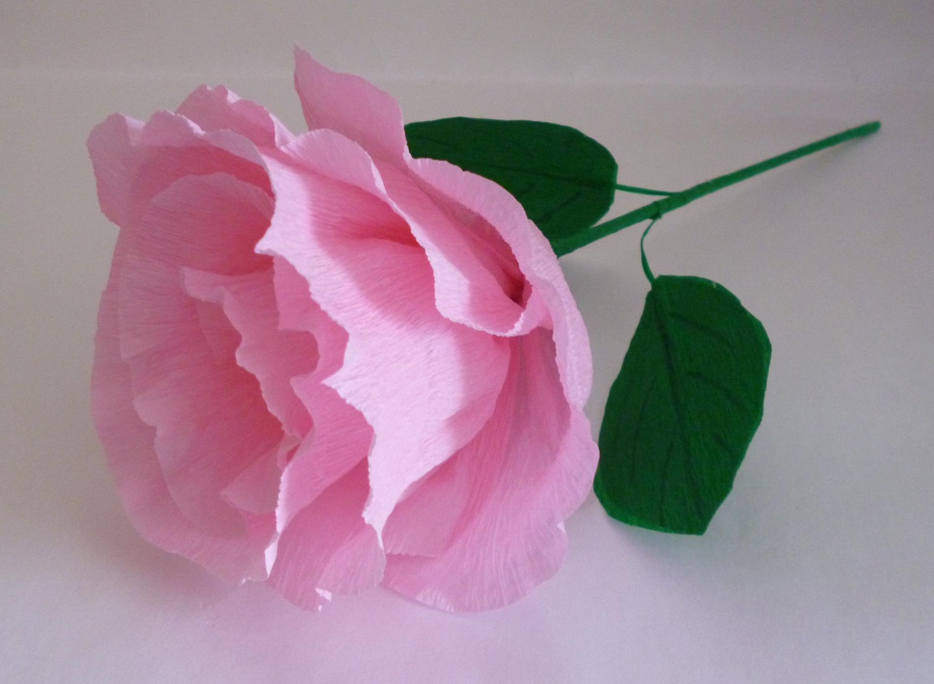 Роза из гофрированной бумаги своими руками: 50 фото как